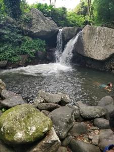 Wallilabou falls