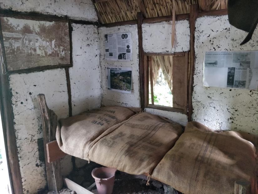 case savane des esclaves